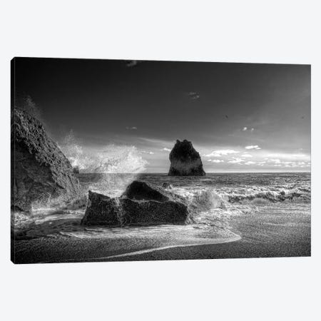 Waves crashing on the beach, Dyrholaey, Iceland Canvas Print #PIM15870} by Panoramic Images Art Print