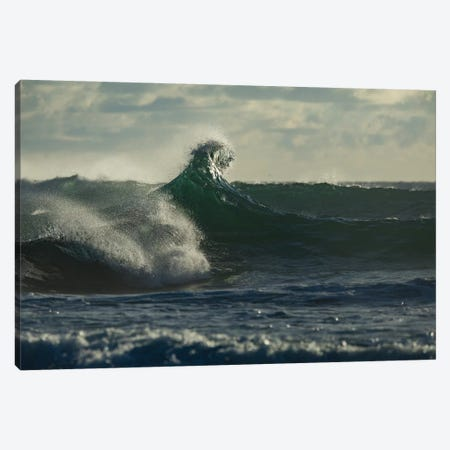 Waves in the ocean, Coral Sea, Surfers Paradise, Queensland, Australia Canvas Print #PIM15871} by Panoramic Images Canvas Art Print