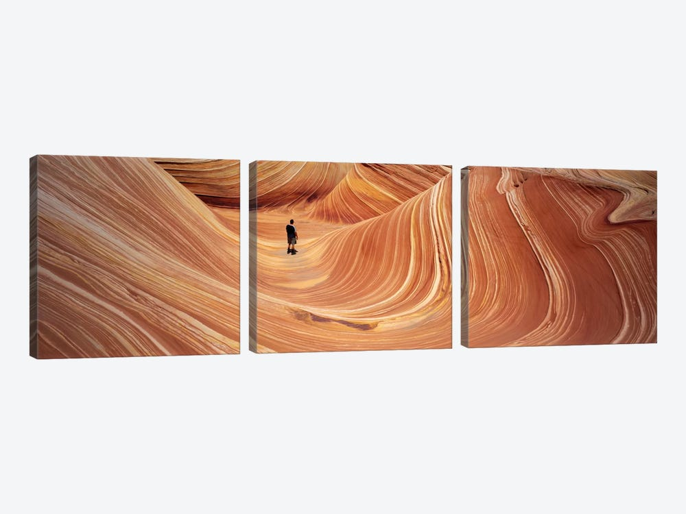 The Wave Coyote Buttes Pariah Canyon AZ/UT USA by Panoramic Images 3-piece Canvas Print