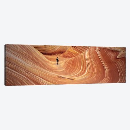 The Wave Coyote Buttes Pariah Canyon AZ/UT USA Canvas Print #PIM1589} by Panoramic Images Canvas Artwork