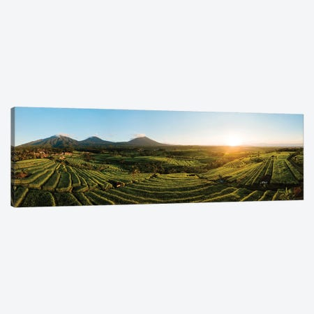 Aerial View Of Jatiluwih Rice Terraces, Tabanan, Bali, Indonesia Canvas Print #PIM15910} by Panoramic Images Canvas Wall Art