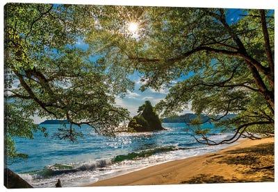 Beach, Corcovado National Park, Osa Peninsula, Costa Rica. Canvas Art Print