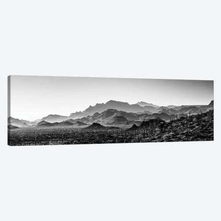 Black And White Landscape With View Of Desert, Baja California Sur, Mexico Canvas Print #PIM15926} by Panoramic Images Canvas Art