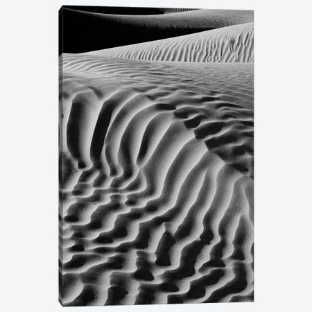 Black And White Landscape With View Of Mesquite Flat Dunes, Death Valley National Park, Mojave Desert, California, USA Canvas Print #PIM15927} by Panoramic Images Canvas Artwork