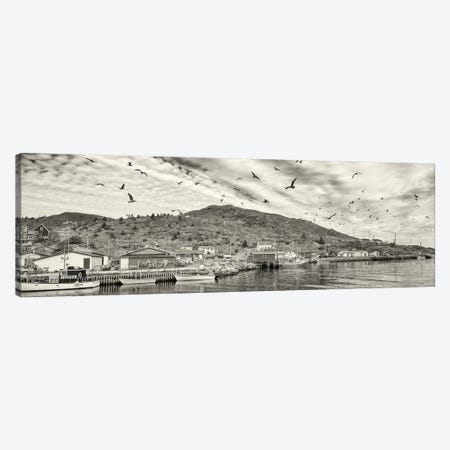 Fishing Boats, Petty Harbor, Avalon Peninsula, Newfoundland Island, Canada Canvas Print #PIM15947} by Panoramic Images Canvas Wall Art