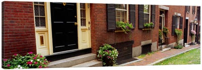 Potted plants outside a house, Acorn Street, Beacon Hill, Boston, Massachusetts, USA Canvas Art Print