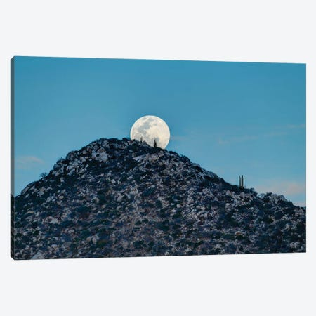 Full Moon Behind Hill In Desert At Sunset, Los Frailes, Baja California Sur, Mexico Canvas Print #PIM15954} by Panoramic Images Canvas Art Print