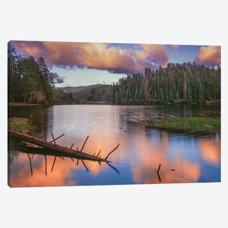 Landscape With Christmas Tree Lake And Evergreen Forest At Sunset, White Mountain Apache Reservation, Arizona, USA Canvas Print #PIM15969} by Panoramic Images Art Print