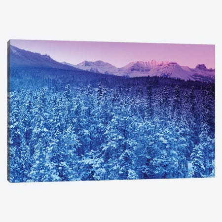 Landscape With Evergreen Forest In Winter And Mountains In Background At Sunset Canvas Print #PIM15971} by Panoramic Images Canvas Art