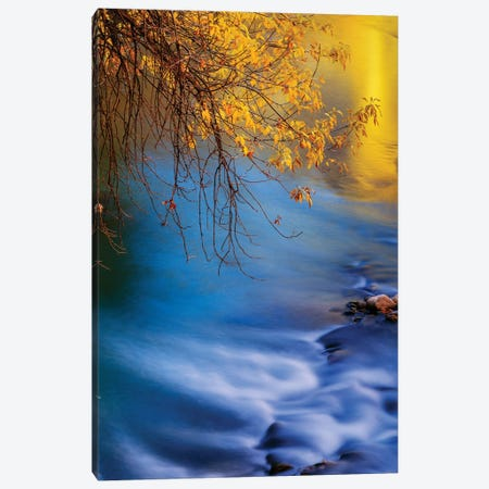 Landscape With Virgin River In Autumn, Zion National Park, Utah, USA Canvas Print #PIM15986} by Panoramic Images Canvas Art