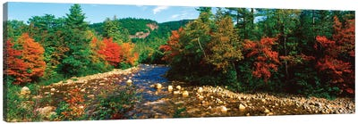 River Flowing Through A Forest, Swift River, White Mountain National Forest, Carroll County, New Hampshire, USA Canvas Art Print