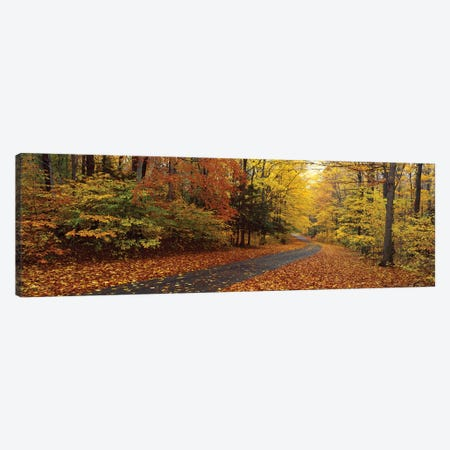 Road Passing Through Autumn Forest, Chestnut Ridge County Park, Orchard Park, Erie County, New York, USA Canvas Print #PIM16017} by Panoramic Images Canvas Wall Art