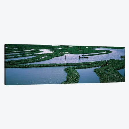 Seaweed Cultivation In A Fish Farm, Phnom Penh, Cambodia Canvas Print #PIM16024} by Panoramic Images Art Print