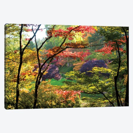Trees In A Garden, Butchart Gardens, Victoria, Vancouver Island, British Columbia, Canada Canvas Print #PIM16045} by Panoramic Images Art Print