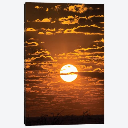 View Of Sunset Over Etosha National Park, Namibia, Africa Canvas Print #PIM16070} by Panoramic Images Canvas Art Print