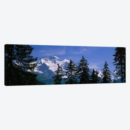 Snowy Winter Landscape, Bernese Oberland, Bern, Switzerland Canvas Print #PIM1619} by Panoramic Images Canvas Wall Art
