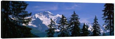 Snowy Winter Landscape, Bernese Oberland, Bern, Switzerland Canvas Print #PIM1619