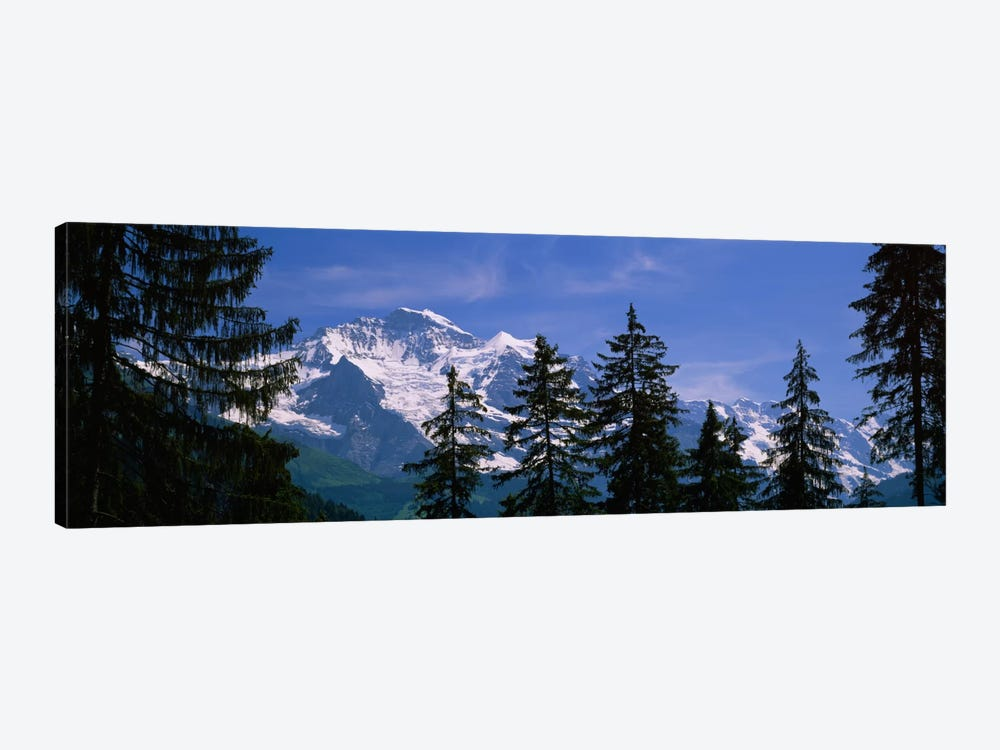Snowy Winter Landscape, Bernese Oberland, Bern, Switzerland by Panoramic Images 1-piece Canvas Wall Art