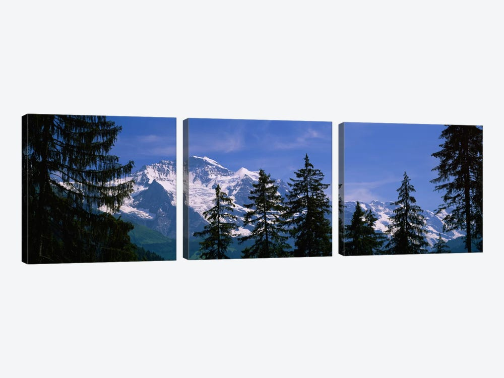 Snowy Winter Landscape, Bernese Oberland, Bern, Switzerland by Panoramic Images 3-piece Canvas Artwork