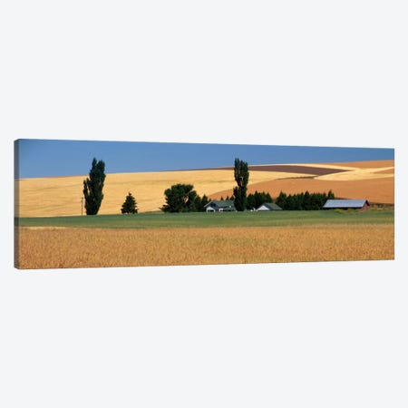 Farm, Saint John, Washington State, USA Canvas Print #PIM1746} by Panoramic Images Canvas Print