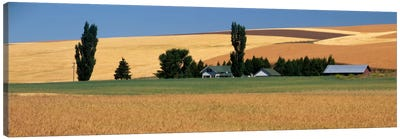 Farm, Saint John, Washington State, USA Canvas Art Print