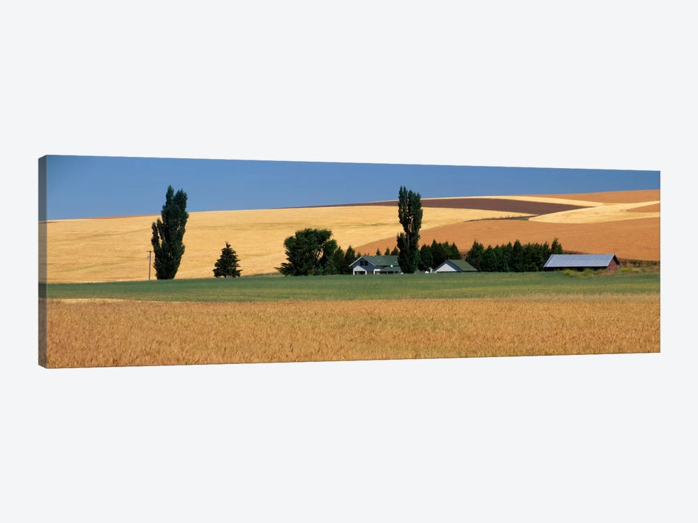 Farm, Saint John, Washington State, USA by Panoramic Images 1-piece Art Print