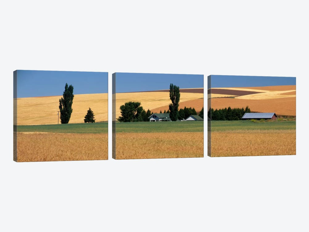 Farm, Saint John, Washington State, USA by Panoramic Images 3-piece Canvas Print