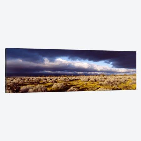Ominous Sky, Mojave Desert, California, USA Canvas Print #PIM1752} by Panoramic Images Art Print
