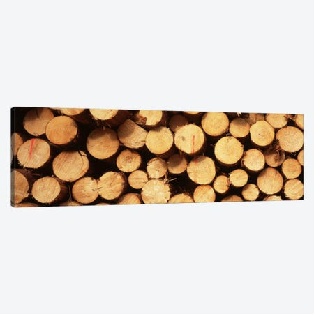 Lumbered Timber Pile, Germany Canvas Print #PIM1755} by Panoramic Images Canvas Wall Art