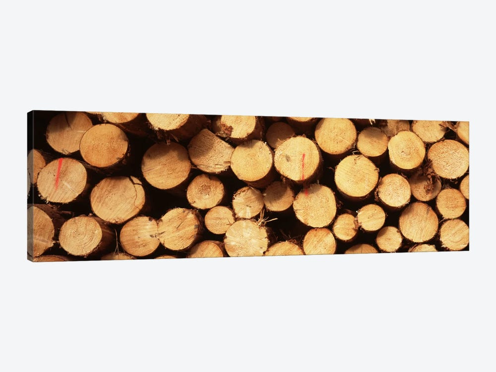 Lumbered Timber Pile, Germany by Panoramic Images 1-piece Canvas Print