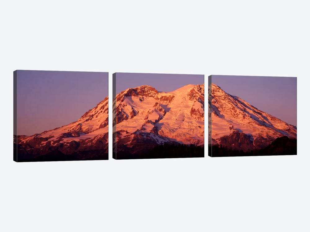 USA, Washington, Mount Rainier National Park by Panoramic Images 3-piece Canvas Art Print