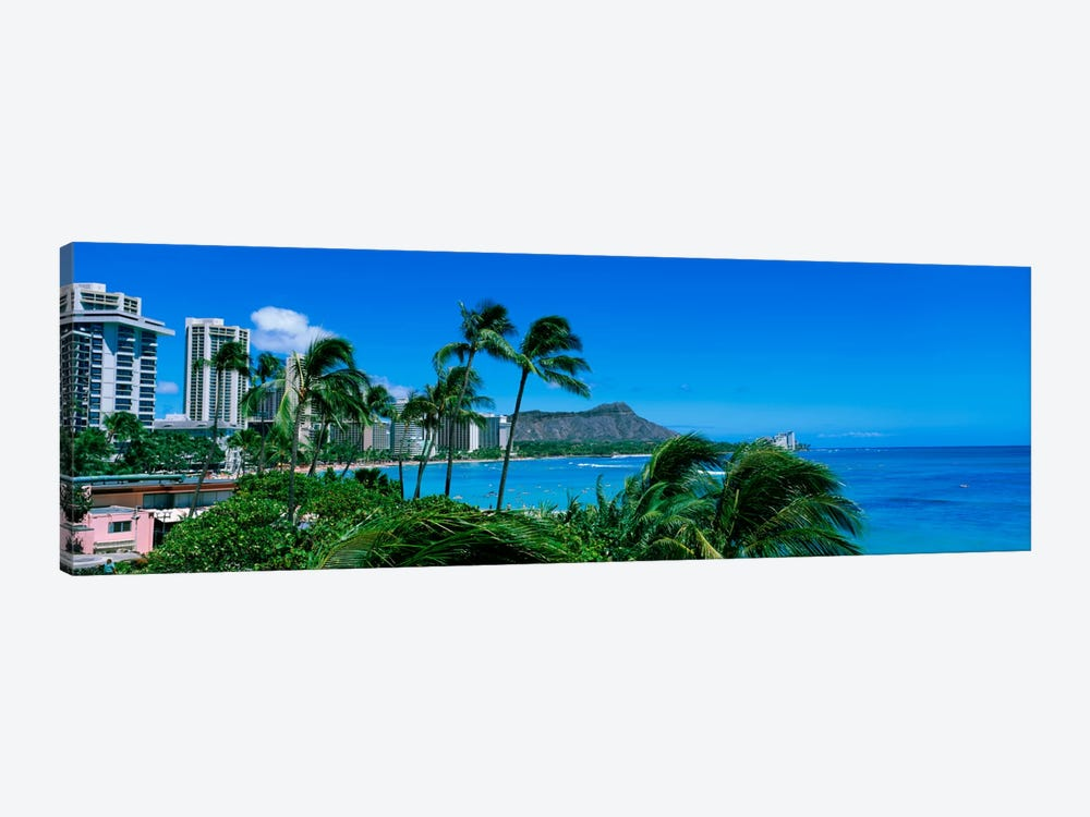Palm Trees On The Beach, Waikiki Beach, Honolulu, Oahu, Hawaii, USA by Panoramic Images 1-piece Canvas Art