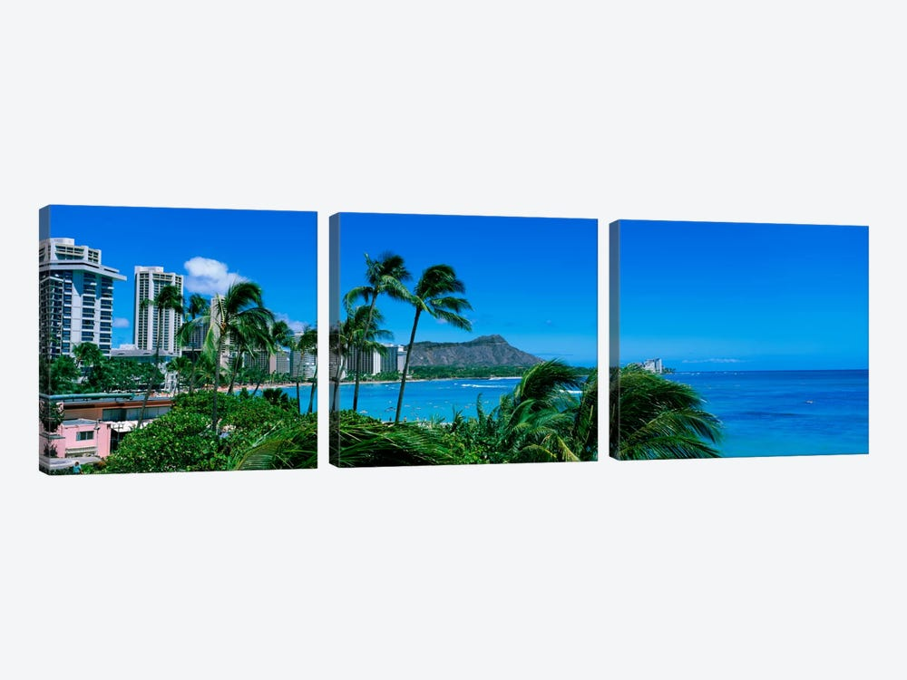 Palm Trees On The Beach, Waikiki Beach, Honolulu, Oahu, Hawaii, USA by Panoramic Images 3-piece Canvas Wall Art