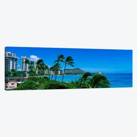 Palm Trees On The Beach, Waikiki Beach, Honolulu, Oahu, Hawaii, USA Canvas Print #PIM1829} by Panoramic Images Art Print