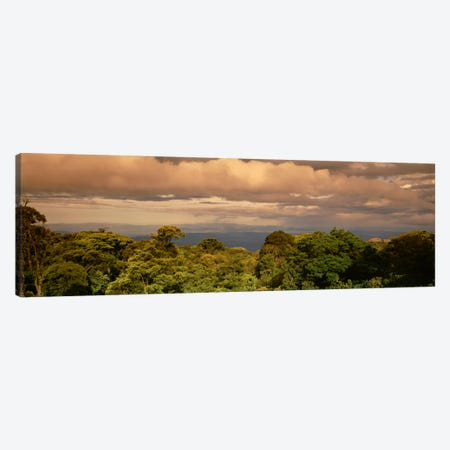 Monteverde Puntarenas Province Costa Rica Canvas Print #PIM1857} by Panoramic Images Art Print