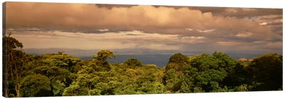 Monteverde Puntarenas Province Costa Rica Canvas Print #PIM1857