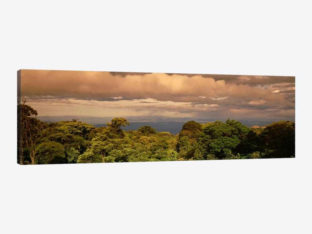 Monteverde Puntarenas Province Costa Rica by Panoramic Images 1-piece Canvas Print