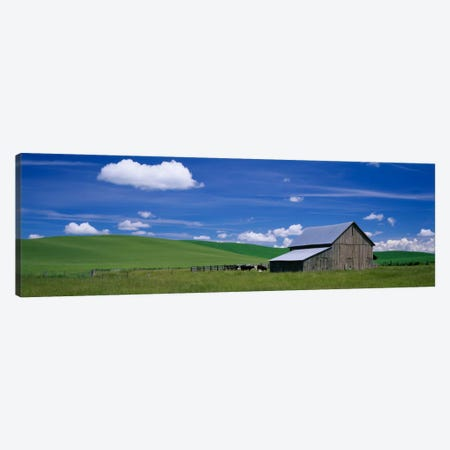 Barn in a wheat field, Washington State, USA Canvas Print #PIM1909} by Panoramic Images Canvas Art