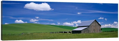 Barn in a wheat field, Washington State, USA Canvas Art Print