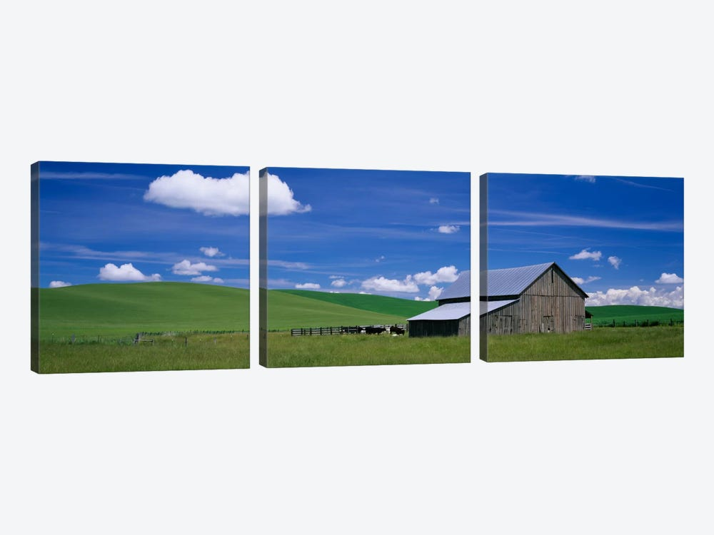 Barn in a wheat field, Washington State, USA by Panoramic Images 3-piece Art Print