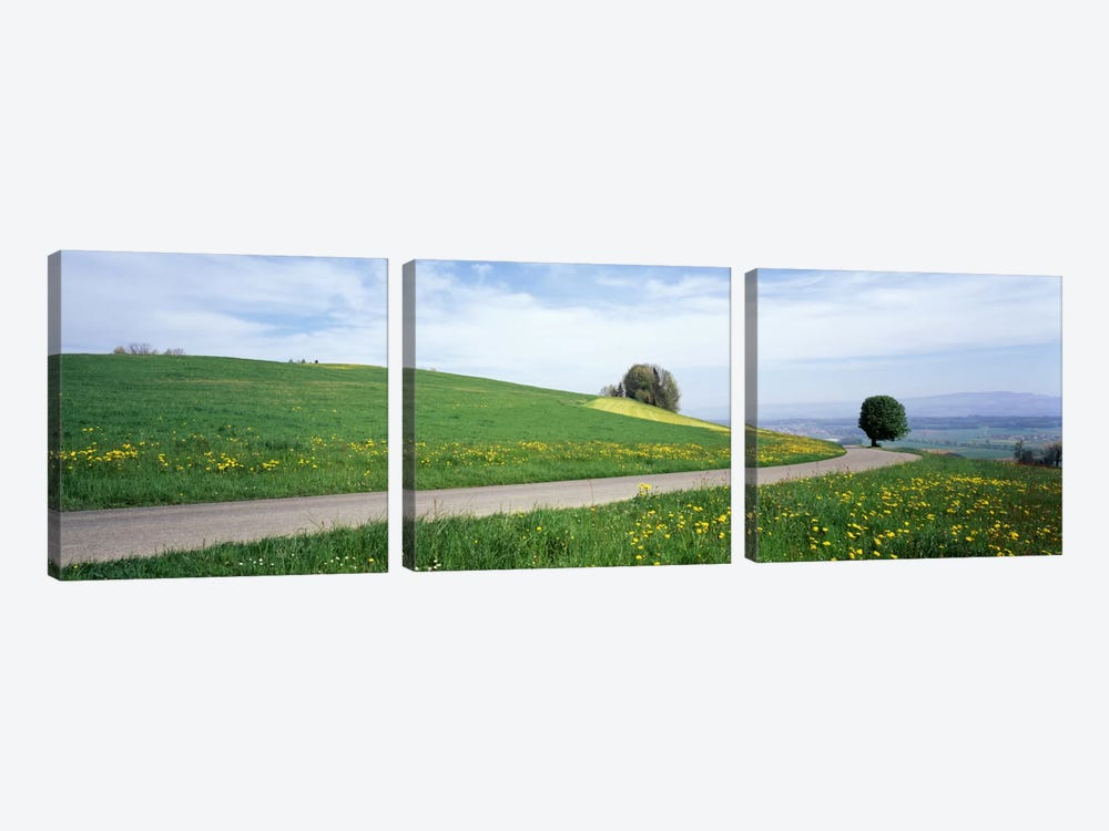 Road Fields Aargau Switzerland 3-piece Canvas Art Print