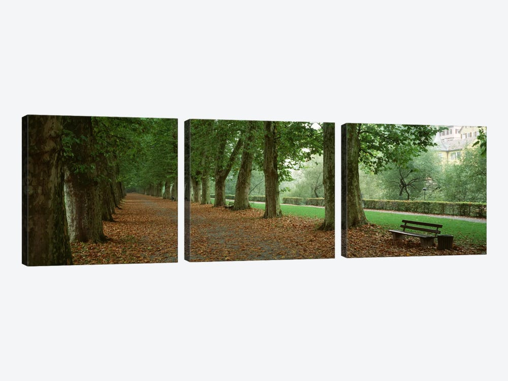 City Park w/ bench in autumn Tubingen Germany 3-piece Canvas Print