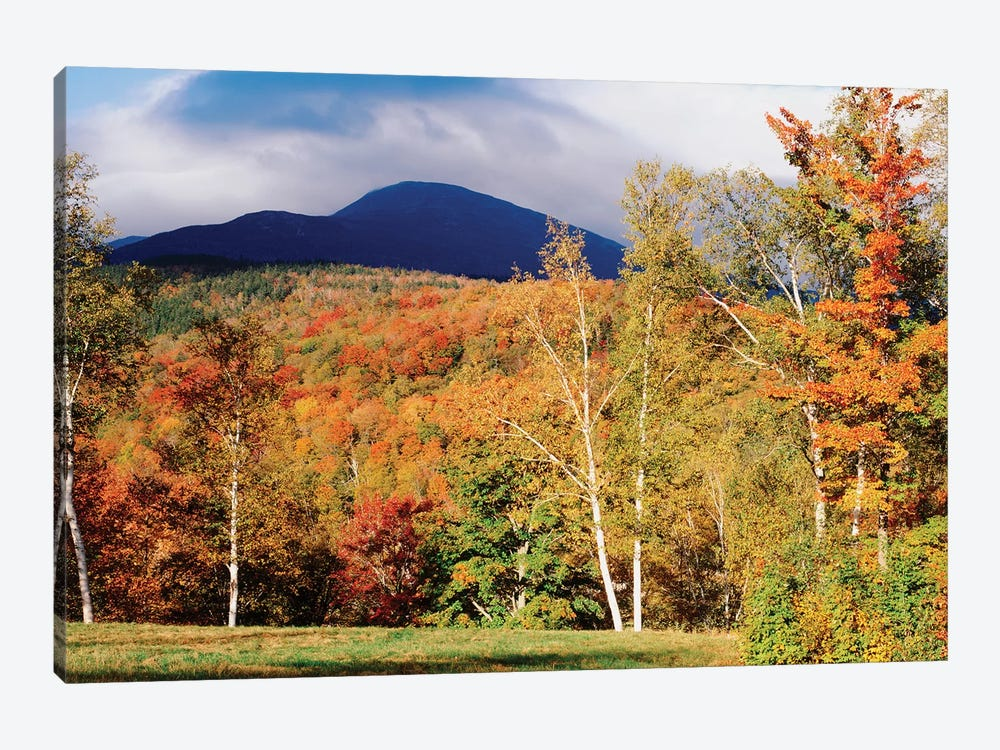 Autumn Landscape, White Mountain National Forest, New Hampshire, USA by Panoramic Images 1-piece Canvas Artwork