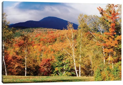 Autumn Landscape, White Mountain National Forest, New Hampshire, USA Canvas Art Print