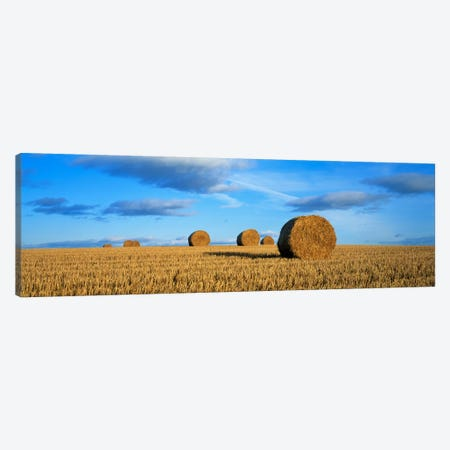 Hay Bales, Scotland, United Kingdom Canvas Print #PIM1964} by Panoramic Images Art Print