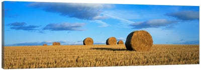 Hay Bales, Scotland, United Kingdom Canvas Art Print