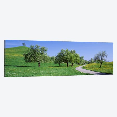 Road Cantone Zug Switzerland Canvas Print #PIM1993} by Panoramic Images Art Print