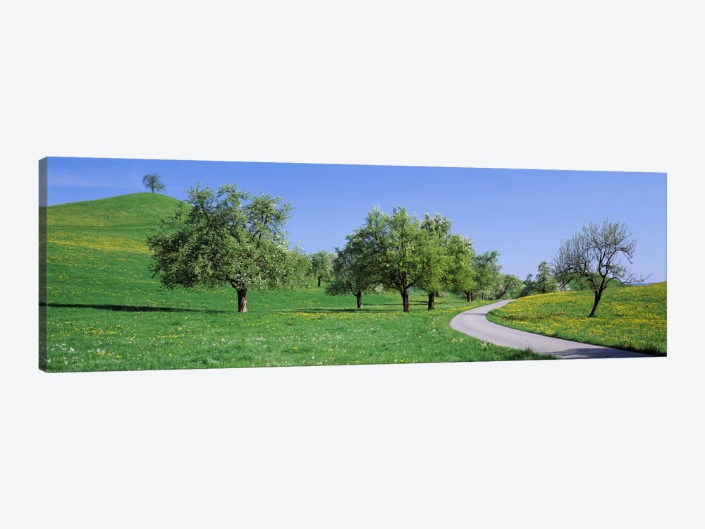 Road Cantone Zug Switzerland by Panoramic Images 1-piece Canvas Art
