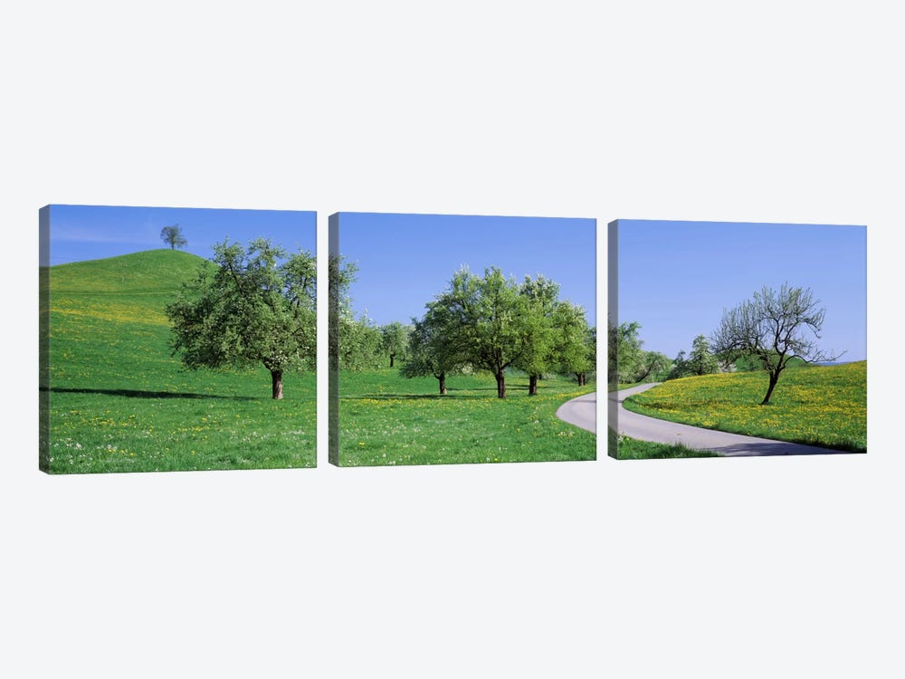 Road Cantone Zug Switzerland by Panoramic Images 3-piece Canvas Artwork