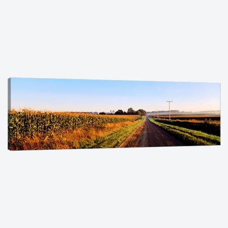 Rural Dirt Road, Illinois, USA Canvas Print #PIM19} by Panoramic Images Canvas Art Print